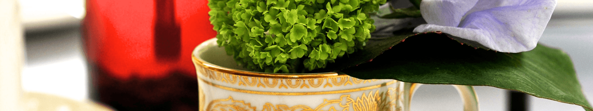 A close up photo showing a top part of vase and plant at Bartle Hall Hotel